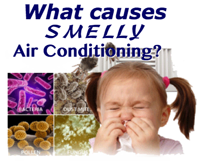 What do specific smells from your AC mean?